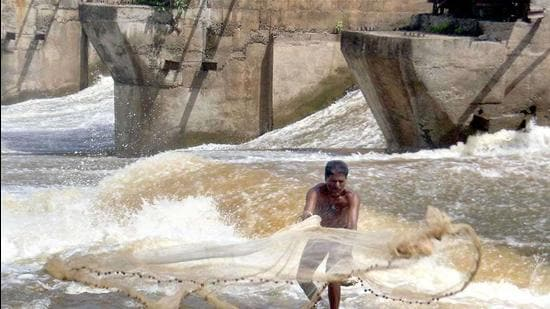 A fisherman throws his fishing net to catch fishes in Krishna river. (Archive)