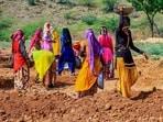 Women labourers work at a site under the Mahatma Gandhi National Rural Employment Guarantee Act, Ajmer, 2020 (PTI)