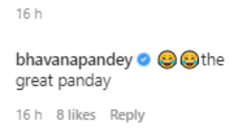 Bhavana Pandey's comment