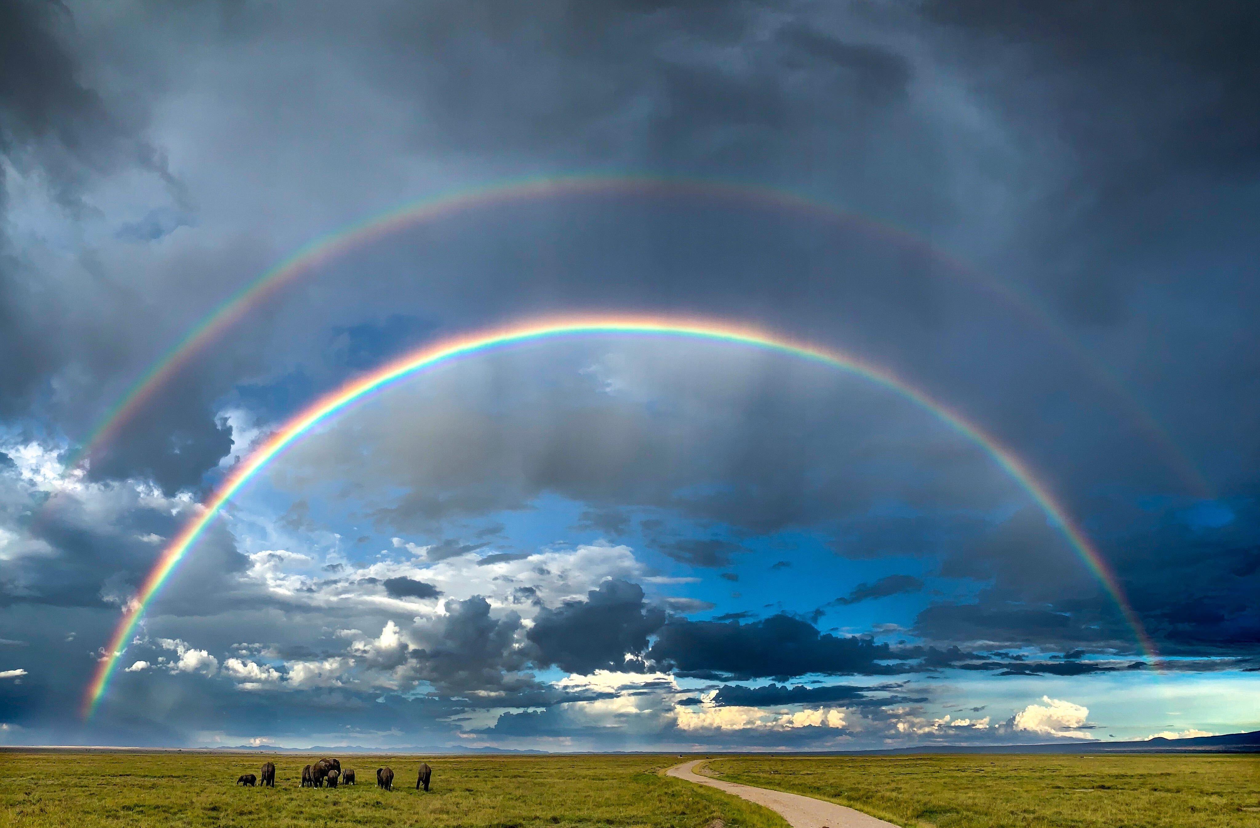 Aditya se souvient de ce moment rare capturé dans le parc national d'Amboseli (Kenya) lorsque des doubles arcs-en-ciel sont apparus dans le ciel après de fortes pluies continues (Photo: Varun Aditya)