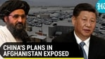 China's plans exposed in Afghanistan