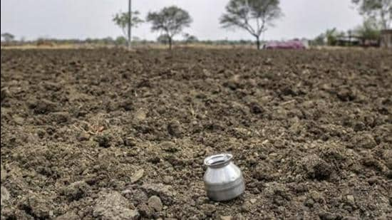 Odisha minister said a contingency plan including water supply through canals, distribution of seeds and mini kits for vegetable farming was being put in motion in areas with deficient rainfall. (Photo Courtesy- Bloomberg/file/Representative use)