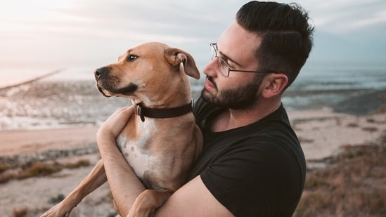 Study suggests companion dogs might be the key to solving dementia(Unsplash)