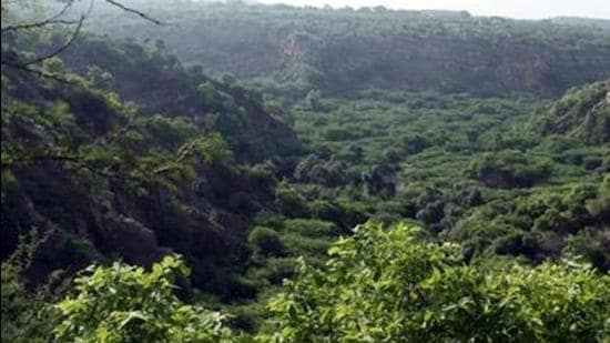 Officials said it is important to formulate a biodiversity plan for the conservation Aravallis in south Haryana. (HT Archive)