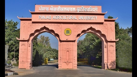 Punjab Agricultural University V-C asked farmers to say no to paddy straw burning and adopt technologies such as happy seeder and super seeder for its management. (HT file)