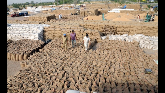 The Centre hiked the MSP for wheat, a rabi season crop, by <span class='webrupee'>₹</span>40 per quintal. (HT Photo)