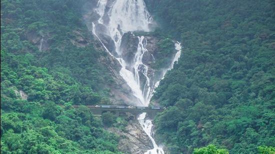 Dudhsagar Falls in Goa. (Shutterstock)