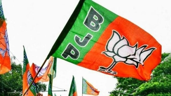 """BJP state president VD Sharma also said that """"hardliners"""" were attempting to create trouble in Madhya Pradesh, but that the party would not allow them to."""