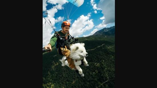 Dog and human paragliding together.(Instagram/@shamsfilmmaker)