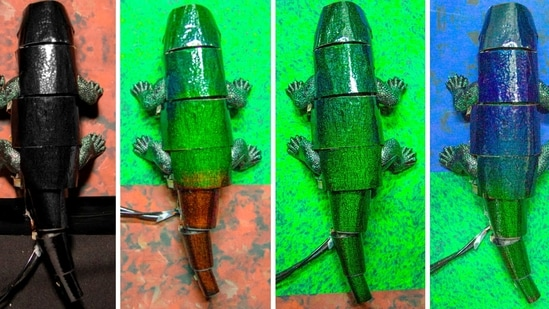 A chameleon robot covered with artificial skin changes its skin colour based on itssurroundings.(Reuters Photo)