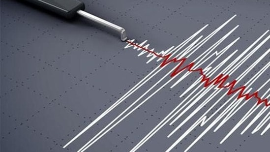 An earthquake of magnitude 4.6 on the Richter scale hit Uttarakhand's Joshimath(Representative image)
