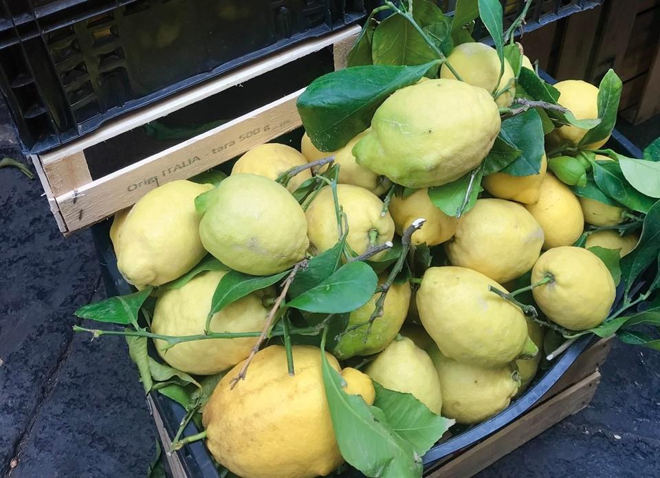 The gorgeous Amalfi lemons(Photo by Natasha Celmi)