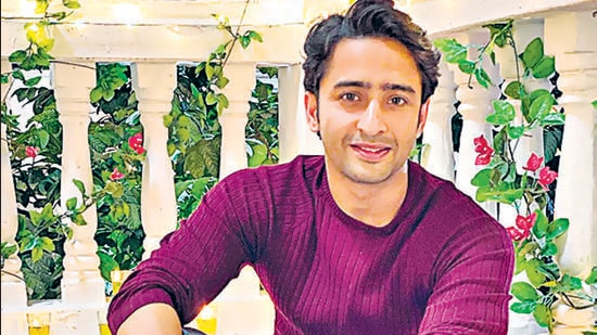 """Shaheer Sheikh says, """"Man's biggest limitation is that he can never give birth to a child."""""""