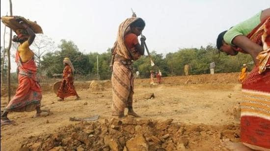 An Indian farmer earned <span class='webrupee'>₹</span>27 per day on average from cultivation in 2018-19. This is less than what he would have earned doing MGNREGS work through the year. (Reuters)