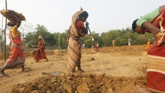 India's inability to shift a large part of its workforce from agriculture to non-agricultural work, especially manufacturing, is considered one of the biggest failures of its economic policy.(HT File)