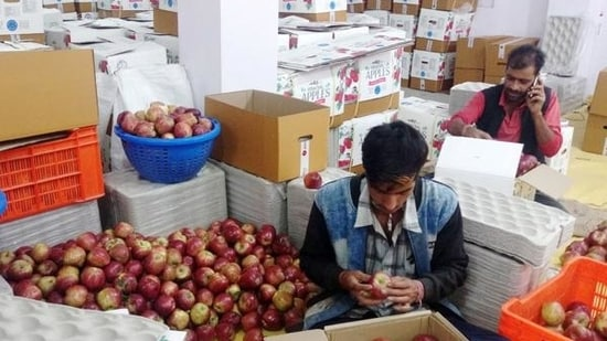 File photo of apples being packaged for sale in the wholesale market in Shimla. (HT)