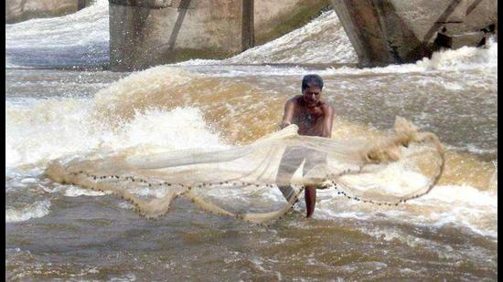 A total of 135 fishermen across coastal districts in Maharashtra were compensated, with the total coming to Rs20 lakh