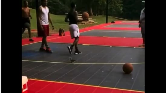 The image taken from video shows the squirrel in a basketball court.(Screengrab)