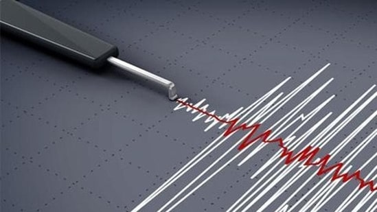 An earthquake of magnitude 5.0 on the Richter scale hit Campbell Bay in Andaman and Nicobar Island on Wednesday(Representational Image)