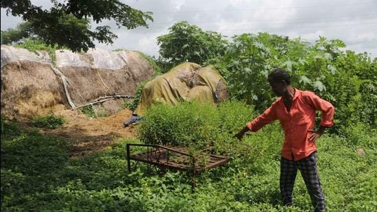 Khairlanji episode: Caste divide cemented by brutality from 15 years ago. (HT Photo)