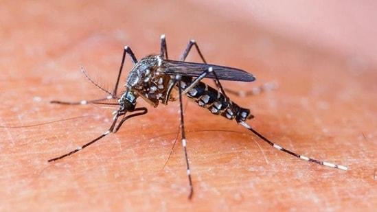 The states reporting serotype - II dengue cases are Andhra Pradesh, Gujarat, Karnataka, Kerala, Madhya Pradesh, Uttar Pradesh, Maharashtra, Odisha, Rajasthan, Tamil Nadu, and Telangana.