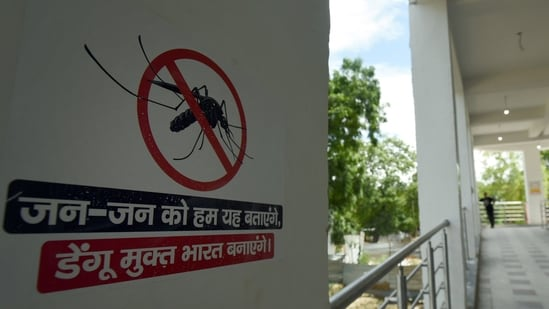 Dengue cases are on rise across the country