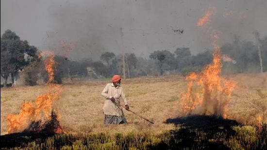 A farmer burns crop stubble in Punjab. Every year, farm fires cause air pollution in Delhi during winters. Delhi environment minister Gopal Rai will make a bio-decomposer solution that turns stubble into manure to prevent farmers from burning it. (HT Photo)