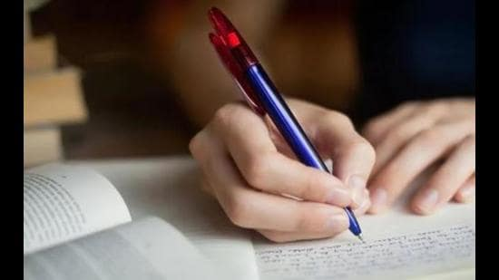 The habit of writing a diary helps a writer. My diary stays not only by my bedside but also joins me wherever I go. Its pages on return are always filled with so much new. (Representative image)