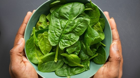 The scientists said that they are testing the plant-based vaccine approach with spinach and lettuce, with a long-term agenda of people growing these plants in their gardens.