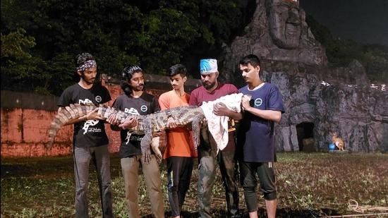 7-foot-long crocodile rescued from Thane