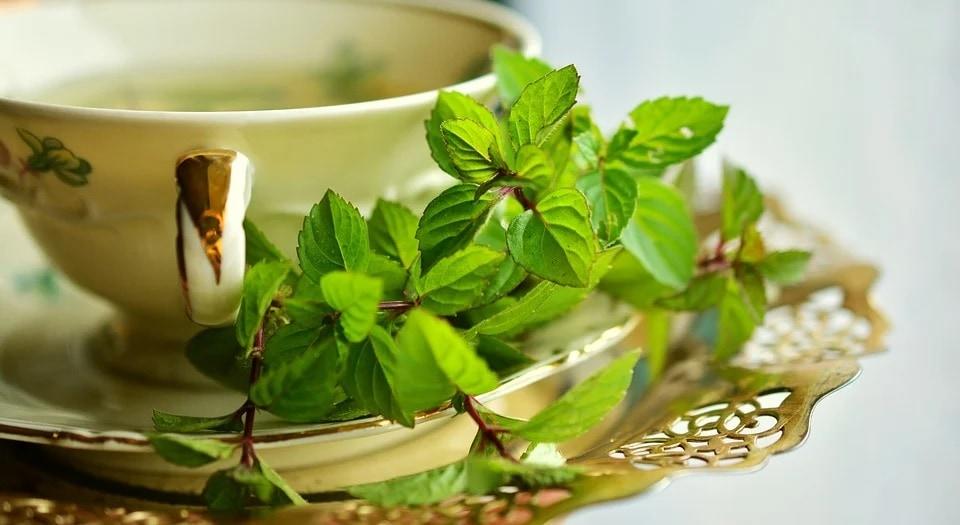 Peppermint tea(Pixabay)