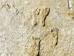 Fossilized human fossilized footprints at the White Sands National Park in New Mexico.(AP)