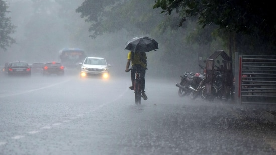 The IMD has issued an alert for Cyclone Gulab for north Andhra Pradesh and adjoining south Odisha coasts.