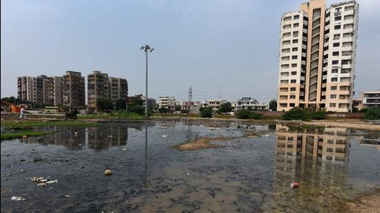 Sagar Kunj group housing residents in Sector 9A said that since the start of monsoon, water has been stagnant around their society, which could play host to mosquito breeding and make them vulnerable to dengue. They also called for a fogging exercise. (Vipin Kumar/HT PHOTO)