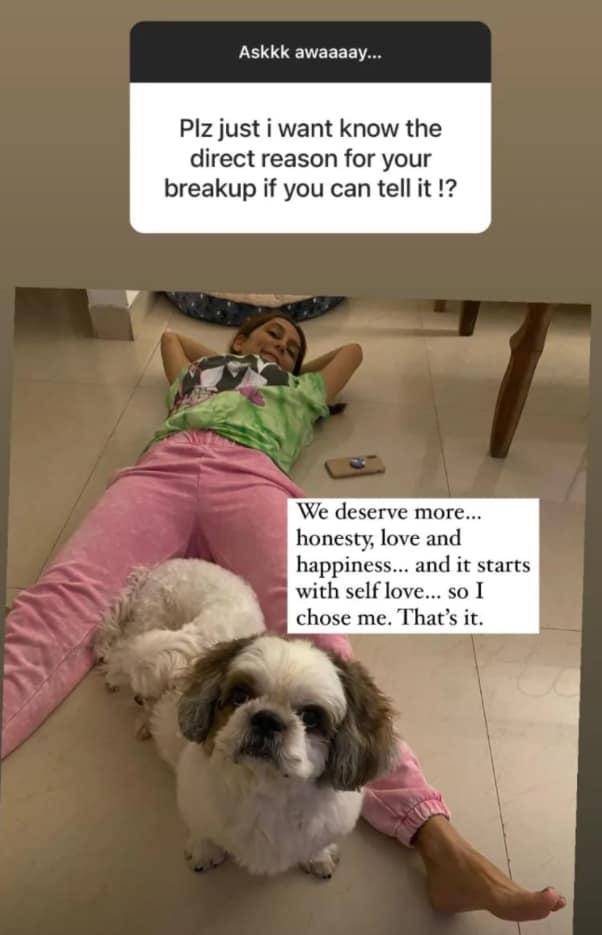 Anusha Dandekar talked about her break-up with Karan Kundrra on Instagram Stories.