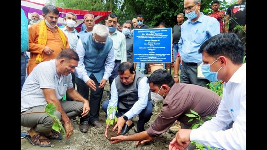 First sapling of cinnamon plant being planted in Una by state agriculture minister Virender Kanwar. (HT PHOTO)