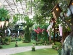 The garden area of Bigg Boss 15 has been transformed into a forest.