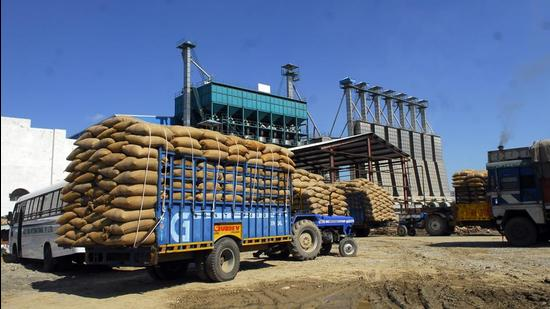 Paddy brought from other states was stored at a rice mill in Kapurthala, Punjab. (Representative image)