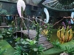 Bigg Boss 15 pool is more of a lake with a wooden bridge to cross from one side to another.