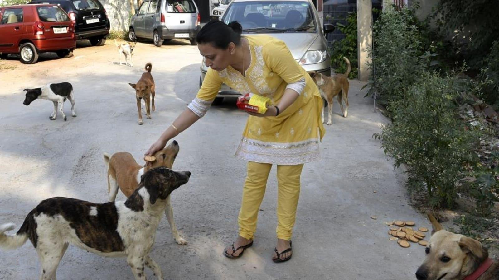 https://images.hindustantimes.com/img/2021/10/04/1600x900/14b7e116-03dc-11ec-9348-047e6c6570e7_1629700702246_1633311424594.jpg