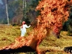 Farm fires are a major source of pollution in Delhi-NCR.(HT File Photo)