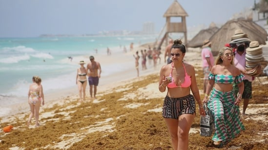 Tourists walk over sand strewn with sargassum at Ballenas Beach in Cancun, Mexico(REUTERS/Paola Chiomante)