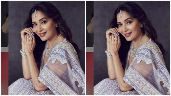 In a V-cut sleeveless blouse of the same fabric, Madhuri posed for the pictures. She teamed it with a long flowy skirt that is heavily embroidered in zari. With a satin dupatta intricately embroidered in white, Madhuri looked right out of a dream.(Instagram/@madhuridixitnene)