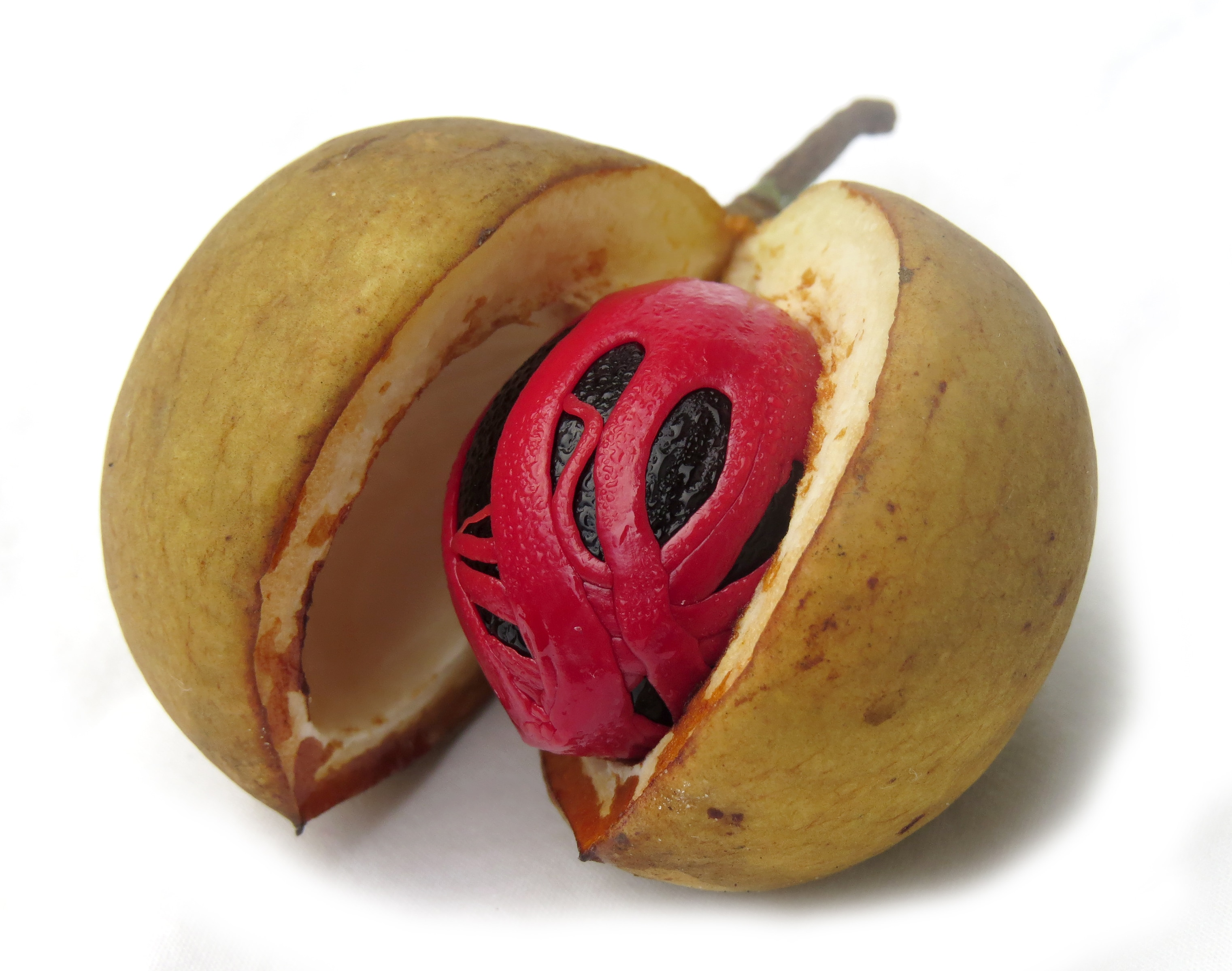 Fresh nutmeg with its mace outer shell embedded within the fruit (Shutterstock)