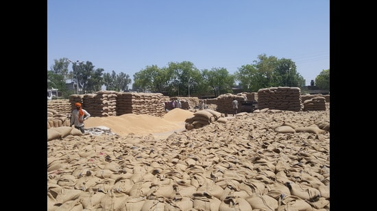 In Amloh sub-division of Fatehgarh Sahib district, the Punjab food and civil supplies department barred 13 commission agents from the procurement process after they allowed purchase of paddy with a moisture content over permissible limit.