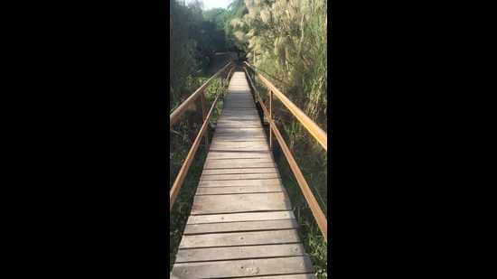 The birders had been demanding for a new bridge for the past several months. (Sourced)
