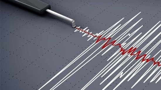 Earthquake of magnitude 3.2 hits Maharashtra's Kolhapur.(Representative image)