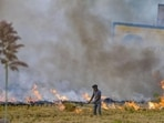 In Punjab, four districts, namely Amritsar, Tarn Taran, Patiala and Ludhiana, contributed more than 70% to the total stubble burning events.(PTI | Representational image)