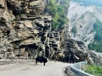 The Badrinath Yatra has been halted and passengers en route to the shrine have been stopped in safe places.(ANI File Photo/Representative Image)