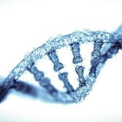 Smart genes